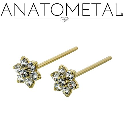 Anatometal-Nostril-Screws