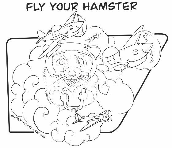 Joey Nichols- Fly Your Hamster